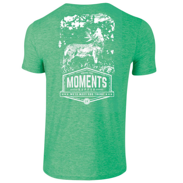 licking branch buck tee ss heather irish back