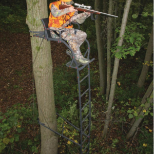 ladder stand pic
