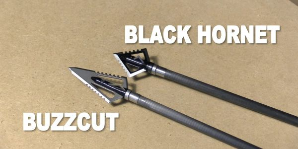 magnus stinger buzzcut and black hornet broadheads