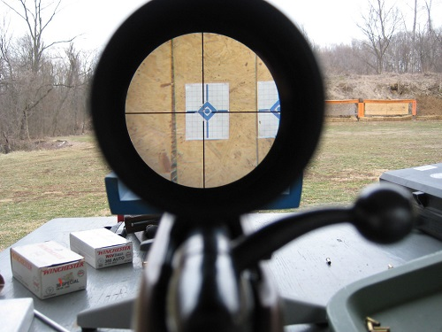 target showing through rifle scope