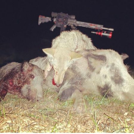 pile of hogs with night vision rifle and scope on top